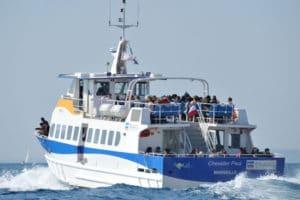 bateau-frioul-marseille