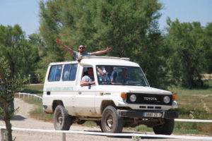 jeep-safari-camargue