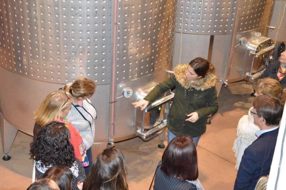 visite-domaine-viticole